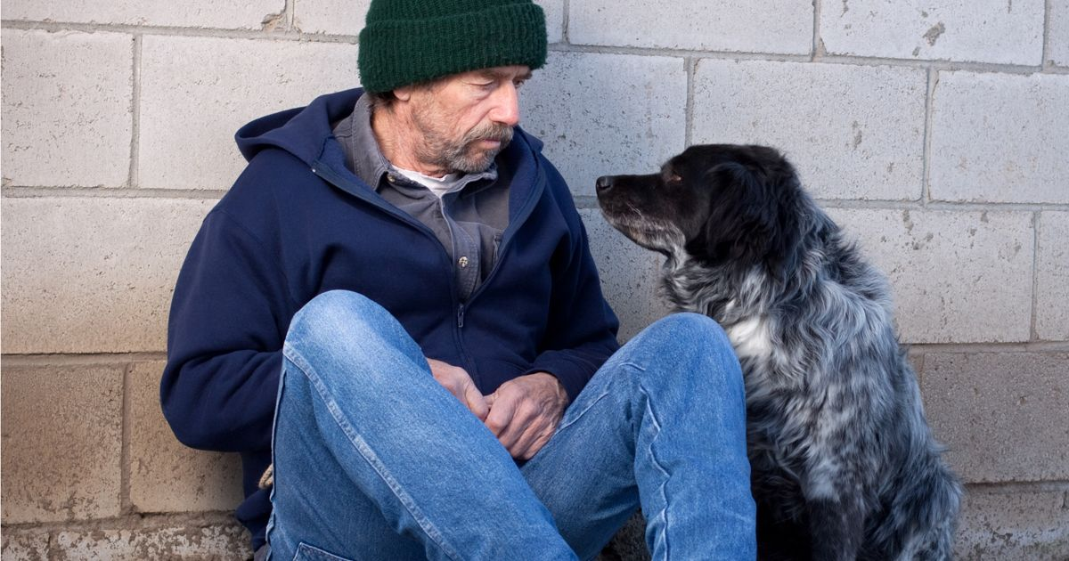 Homeless face split from their dogs if they want food and shelter this Christmas