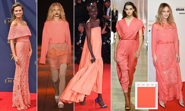 Pantone's 2019 colour of the year is 'living coral'