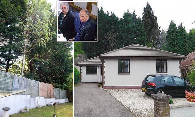 Couple claim victory over neighbour in 17-year war over 50ft hedge