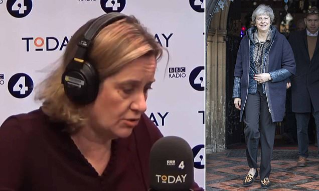 Amber Rudd backs PMs Brexit deal and urges Tory loyalty