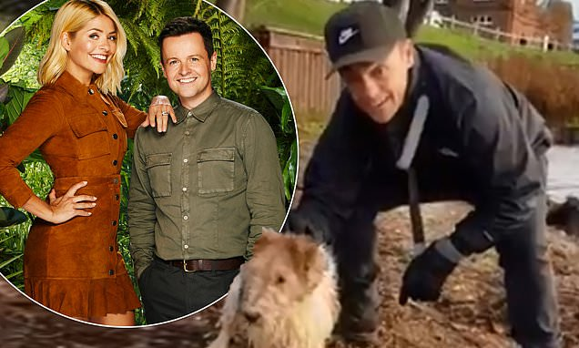 Ant McPartlin poses with pet pooch ahead of I'm A Celebrity final