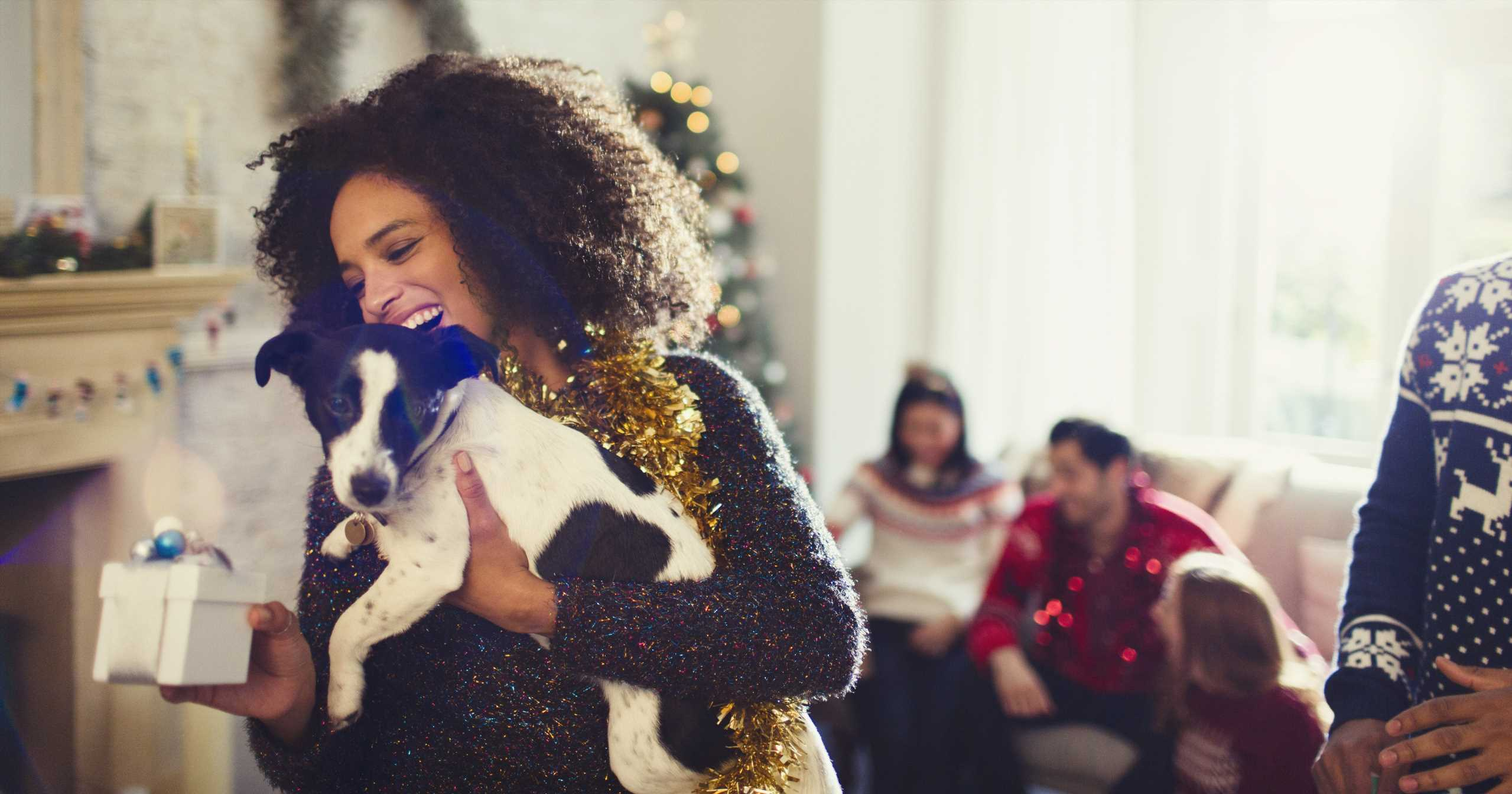3 Gifts Our Pets Are Going to Adore this Holiday Season
