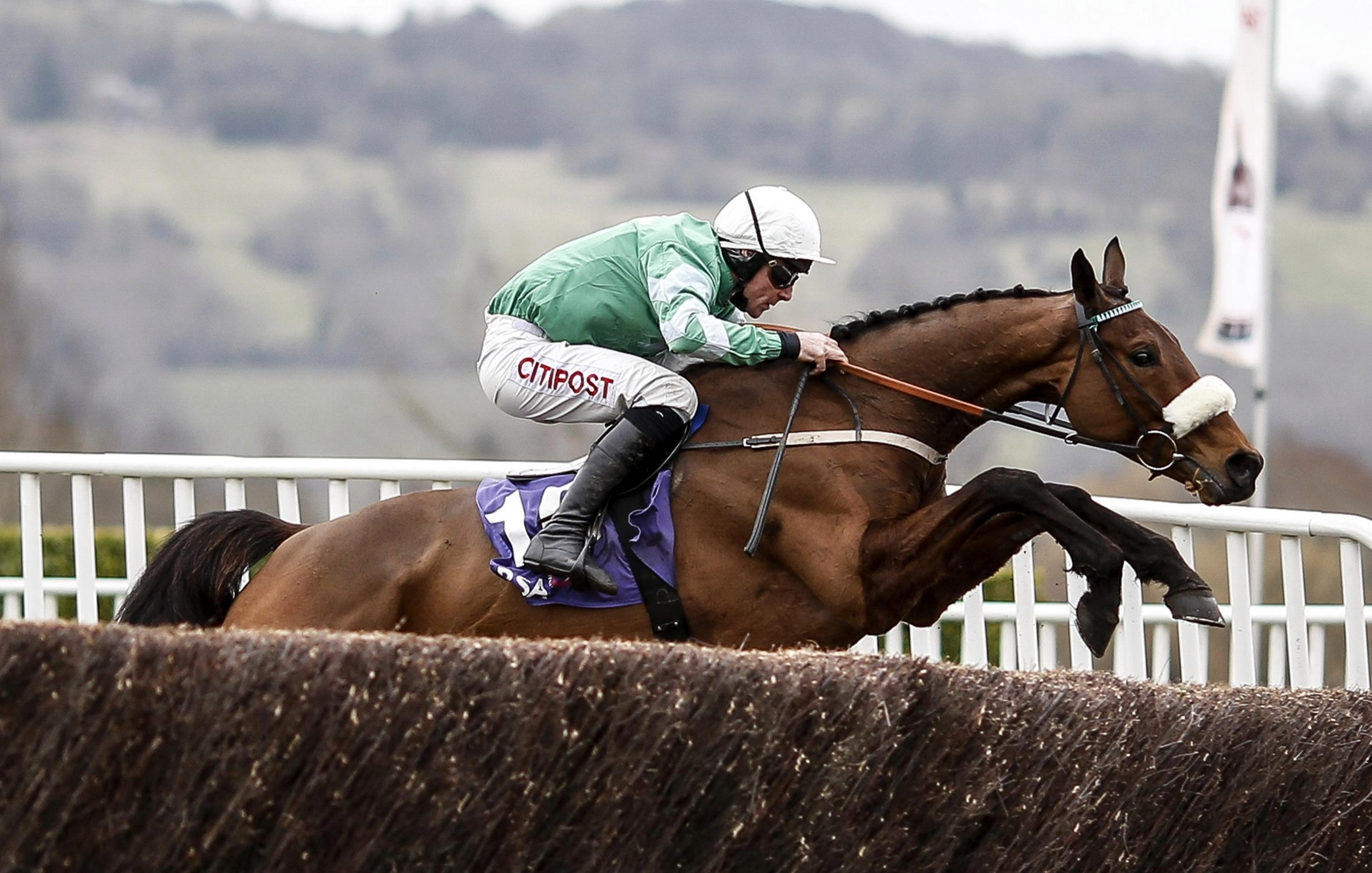 Cheltenham Gold Cup favourite Presenting Percy to make his return in Sunday's John Durkan Chase at Punchestown