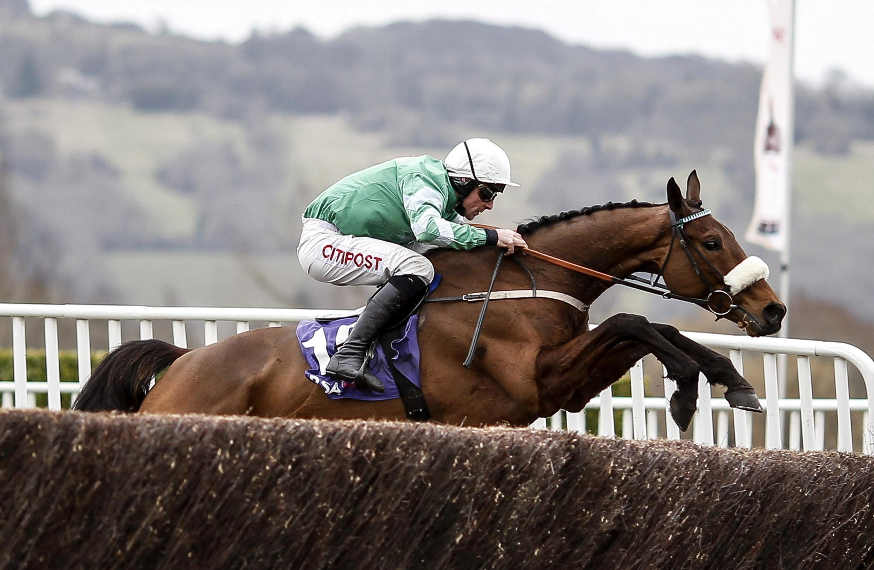 Gold Cup favourite Presenting Percy the star on show in Savills Chase