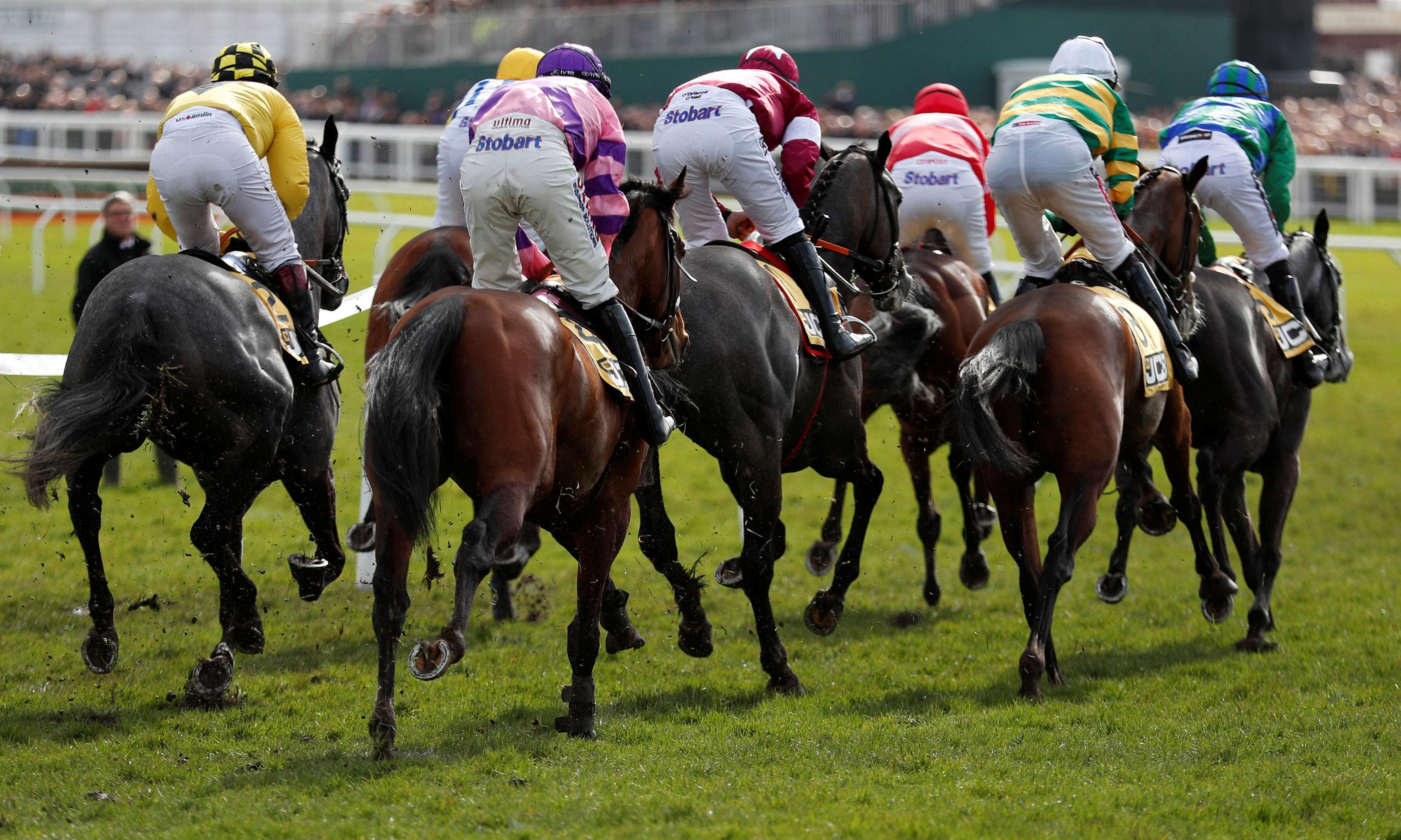 Latest horse racing results: Who won the 2.30 at Cheltenham live on ITV today?