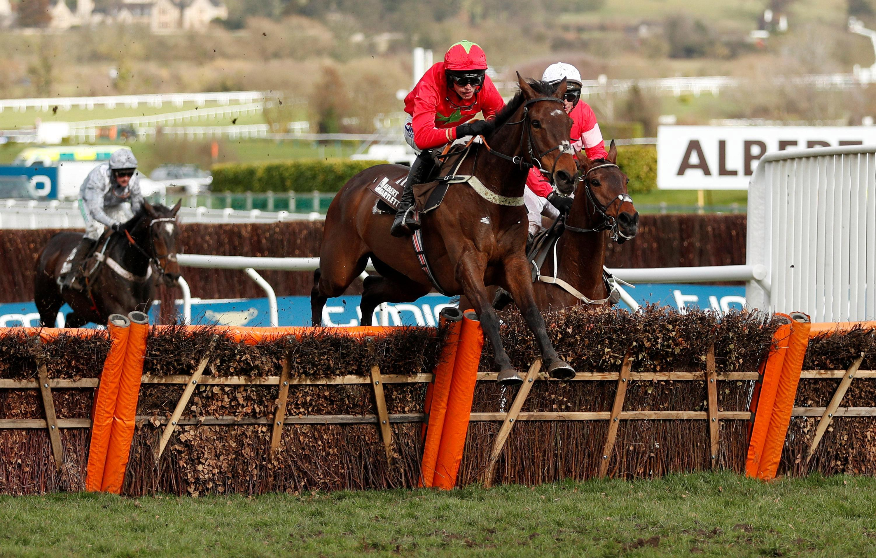 Cheltenham Festival 2019: Albert Bartlett Novices' Hurdle preview, tv schedule, race time, tips, runners and riders and odds