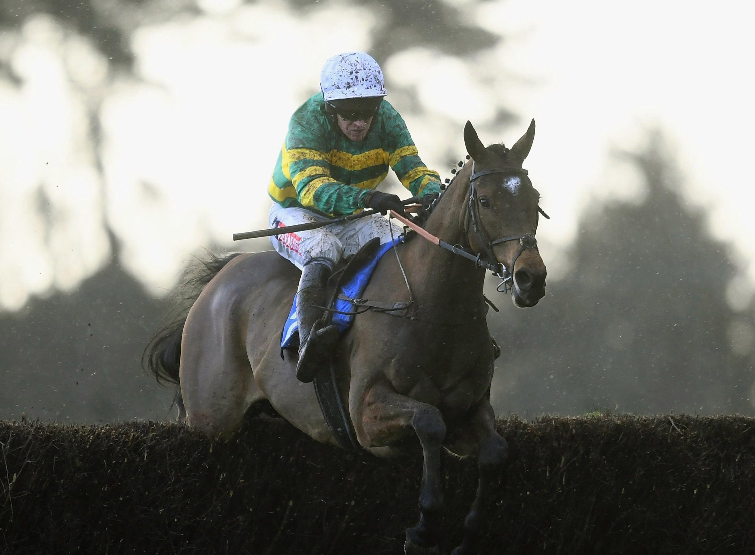 Options open for back-to-form Defi Du Seuil after impressive Exeter victory