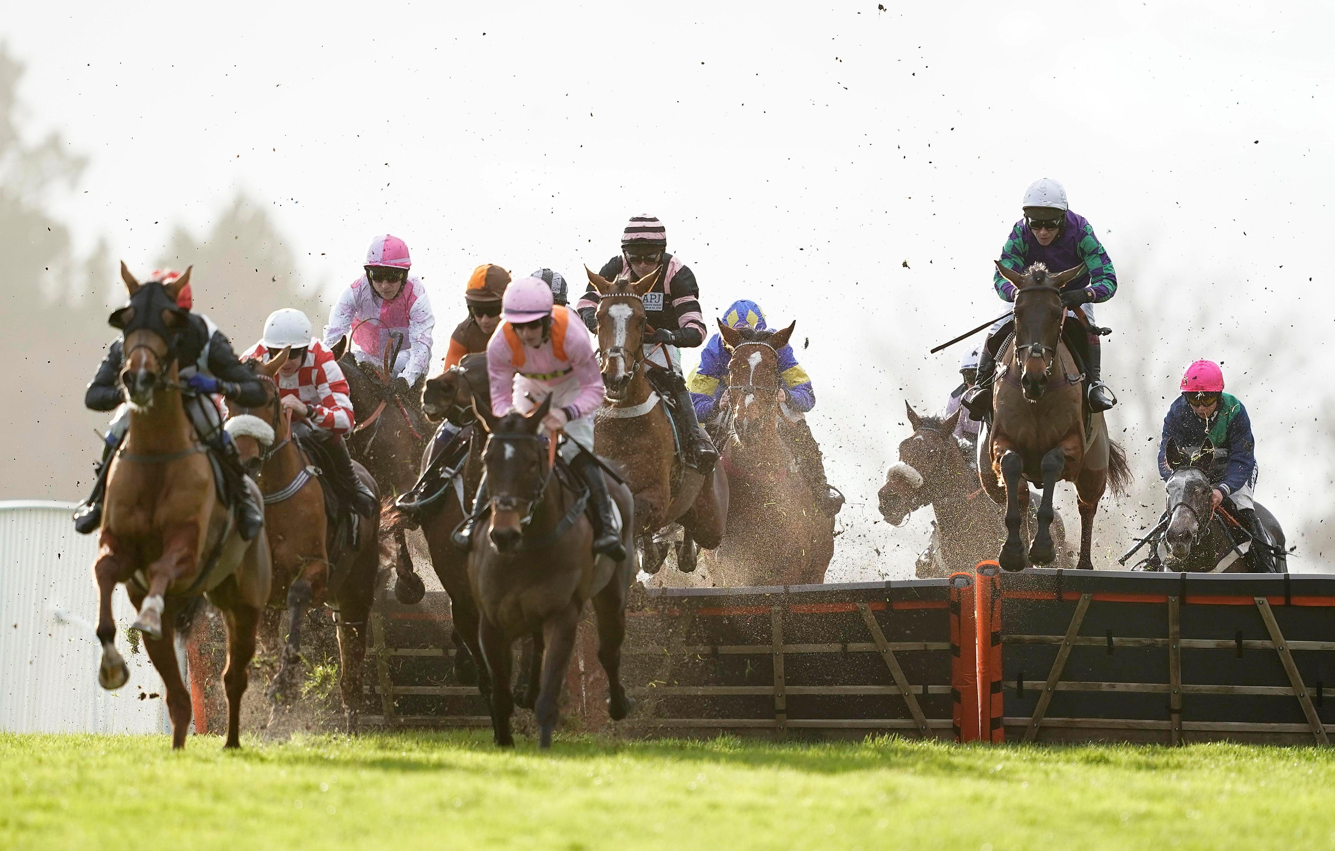 Saturday's Long Walk Hurdle betting preview: Latest runners, riders, odds and trainer quotes for the final field