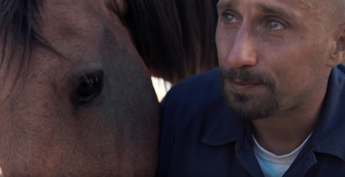 'The Mustang' First Trailer: Matthias Schoenaerts Breaks Wild Horses in Sundance Drama