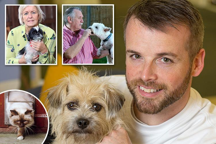 Expert vet Sean McCormack gives health advice to the worried owners of pets from allergies to outdoor nerves