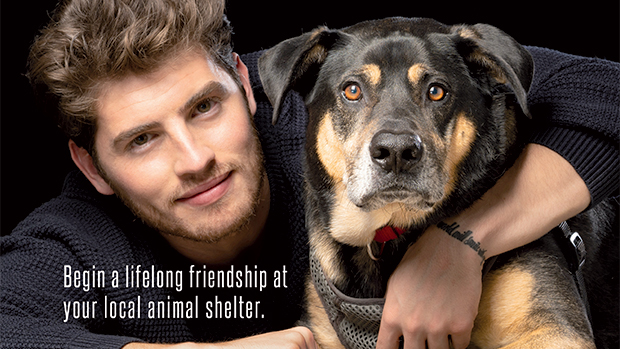 Gregg Sulkin Plays With Puppies As He Urges Fans To Adopt Homeless Animals In New PETA Ad