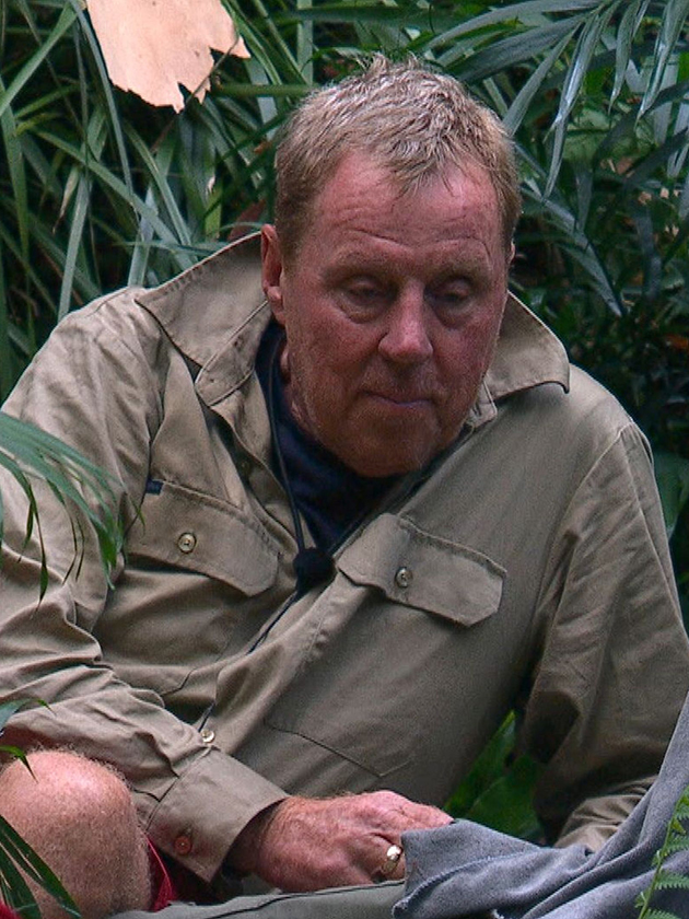 I'm A Celebrity: Is Harry Redknapp set for this acting role after Jungle exit?