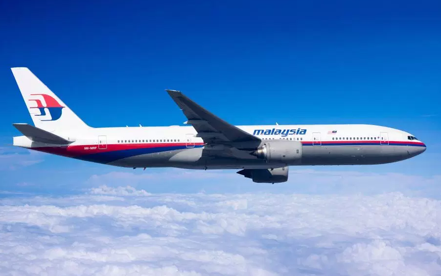 MH370 'was hijacked in sinister plot to harvest passengers' organs', conspiracy theorist claims