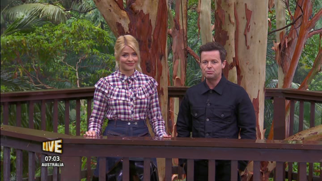 I'm A Celebrity's Declan Donnelly makes a cheeky dig at Holly Willoughby as he reveals he thought she'd quit in the first few days