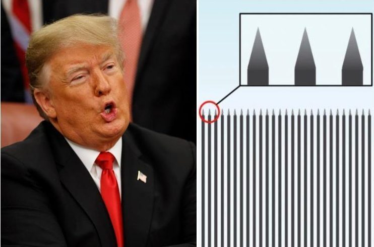 Donald Trump unveils spiked Mexico wall design as he shuts down US government over border budget