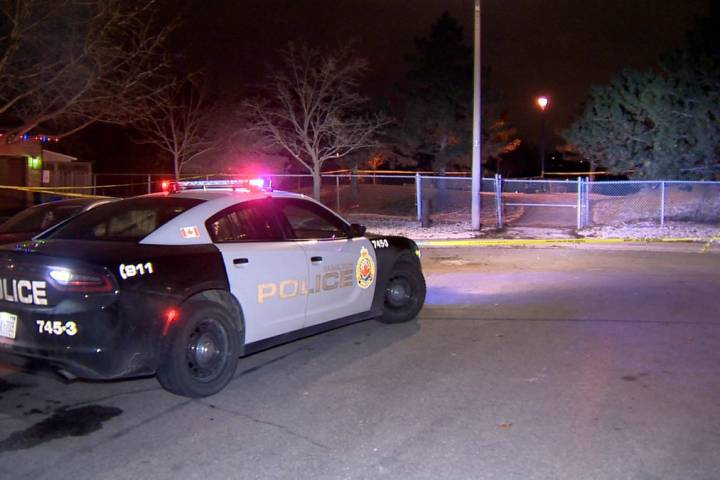 Suspect in fatal stabbing on Hamilton mountain turns himself in to police