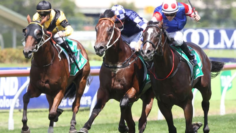 Portelli finally able to train Exceltic after a slow start