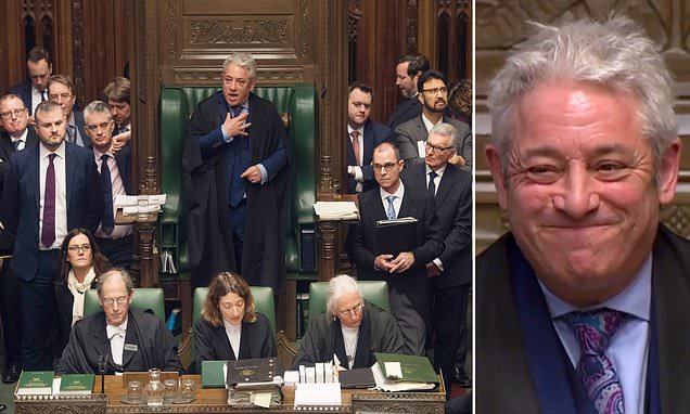 John Bercow branded a 'pure and simple bully' by Tory whip