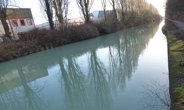 'Pollution incident' causes stretch canal to change colour