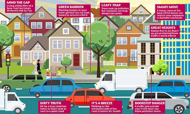 How you can protect your family from the perils of pollution street