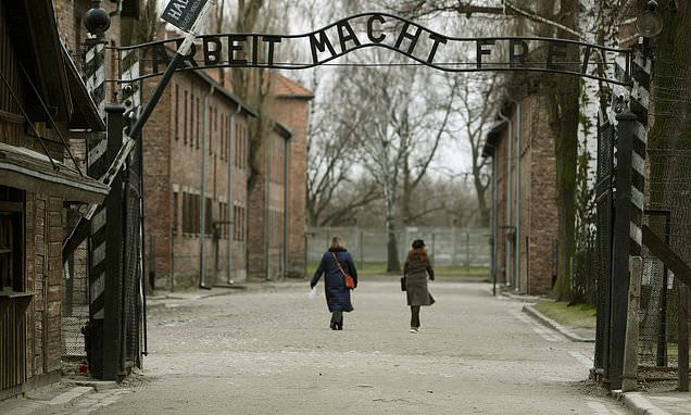 One in 20 Britons do not believe the Holocaust took place, study finds