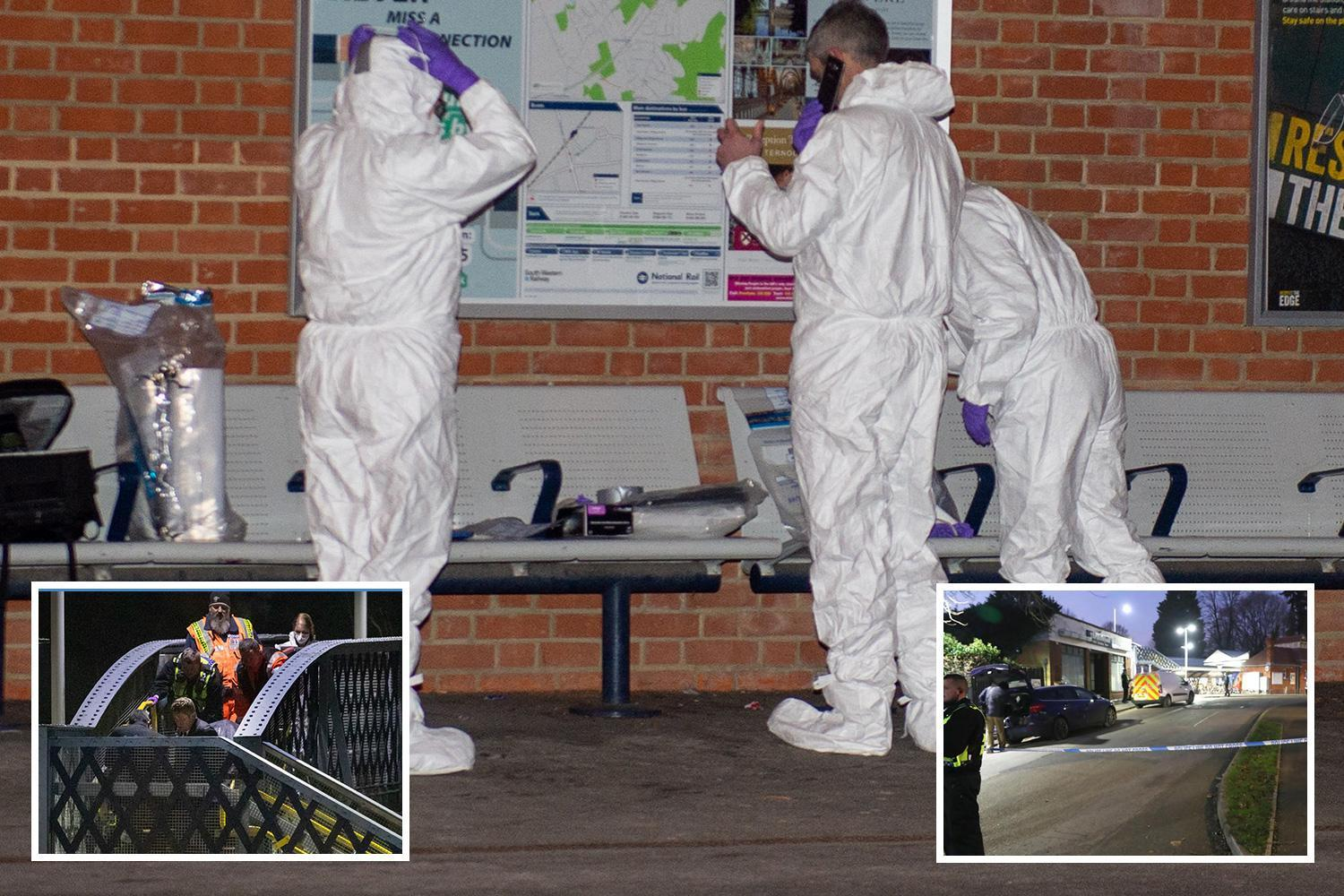 Horsley train murder – man and woman arrested by police after dad, 51, stabbed to death in front of teenage son