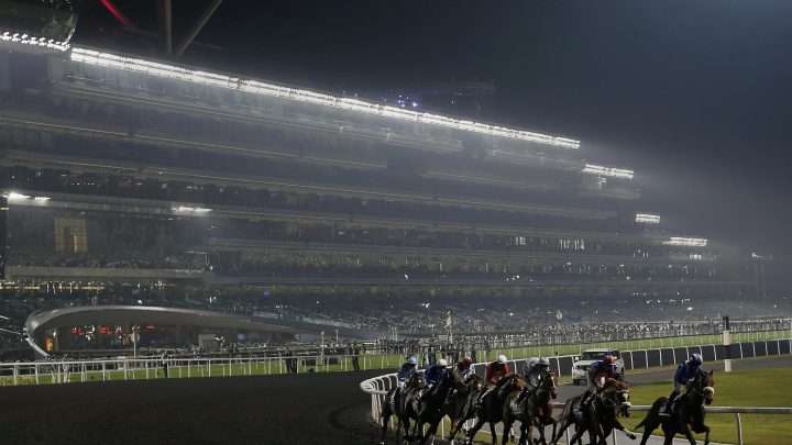 Thursday racing tips: A Thursday longshot to fill your pockets at Meydan from Jack Keene