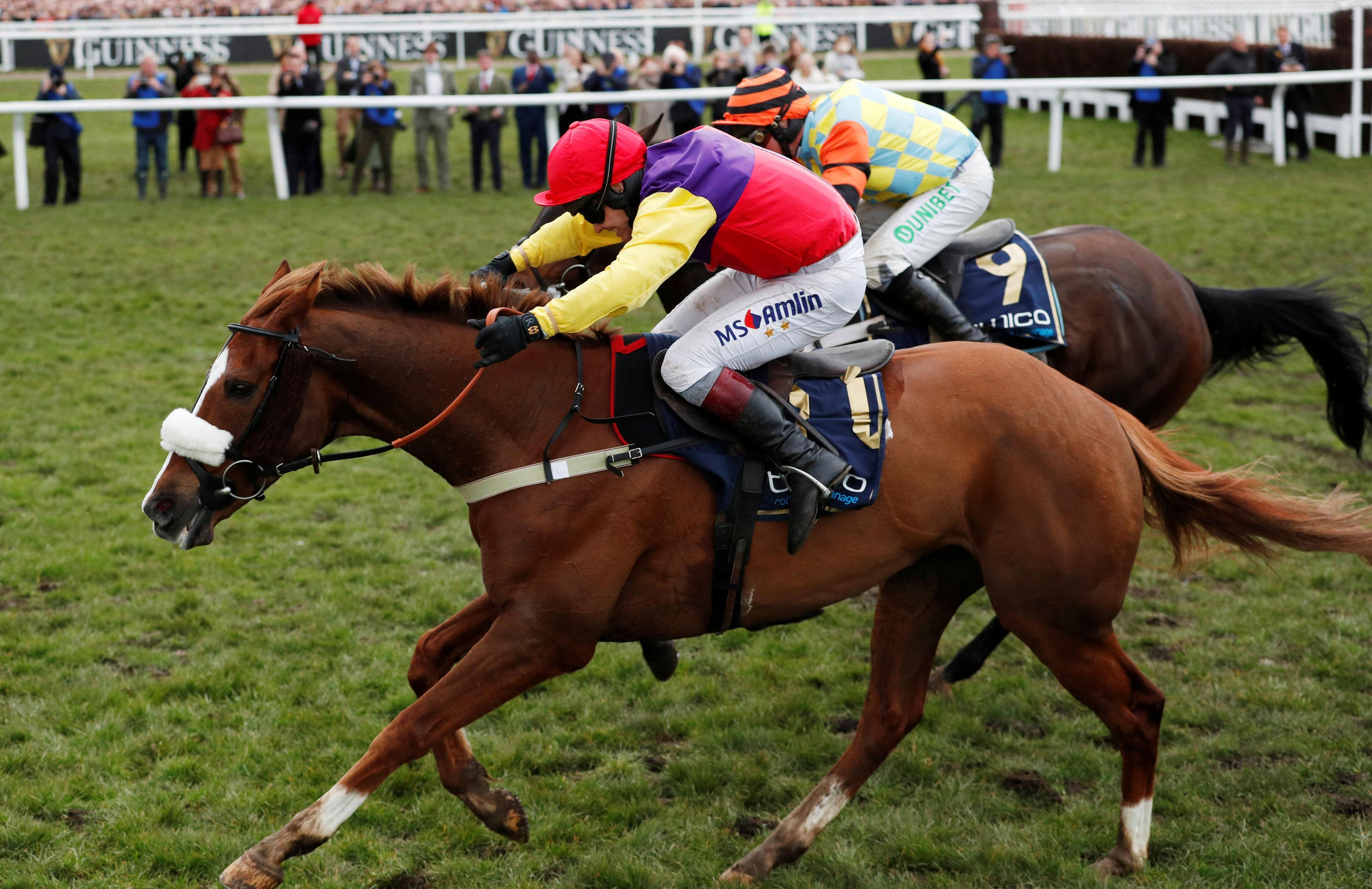 Cheltenham Festival 2019: Entries made for Gold Cup as 43 hopefuls including Native River, Might Bite, Presenting Percy and Kemboy set sights on the big one