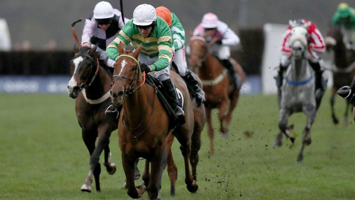 Didtheyleaveuoutto on track for Betfair Hurdle at Newbury for Nick Gifford