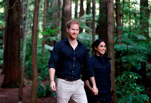 Prince Harry is 'beguiled' by Meghan Markle and has 'changed considerably', says royal expert