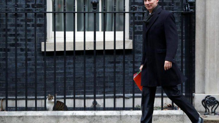UK to formulate Irish border proposals 'in a few days':  Hunt
