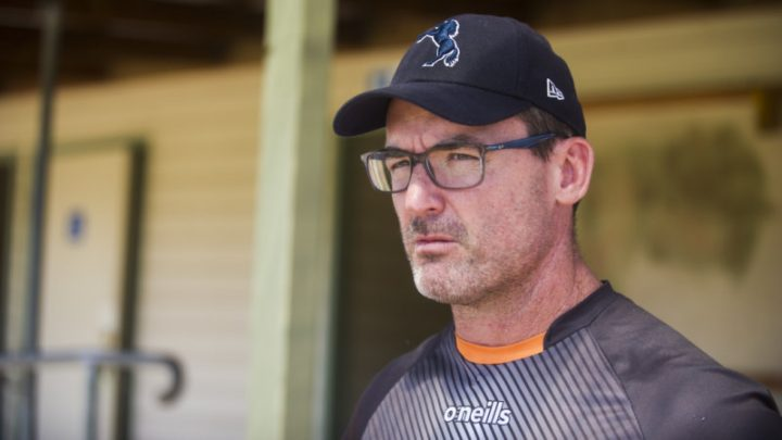 McKellar jumps to defence of sacked Wallabies attack coach Larkham