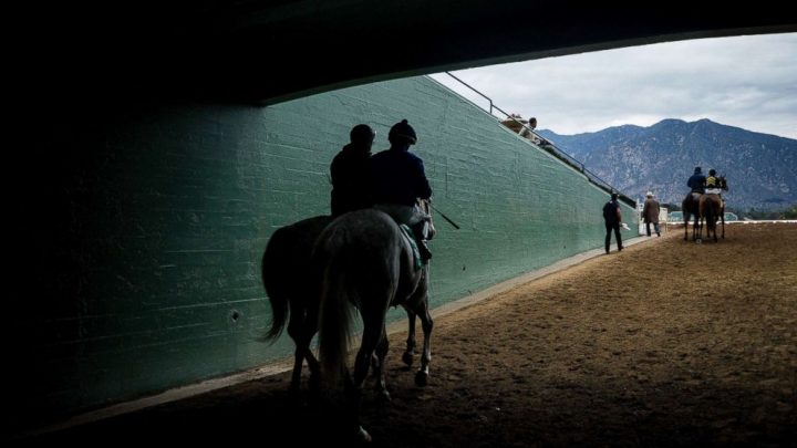 Santa Anita Park's main track reopens after 19 horse deaths in 2 months
