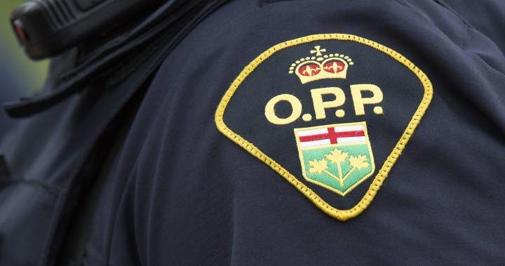 Retired Hagersville teacher charged with sexual assault, sexual exploitation
