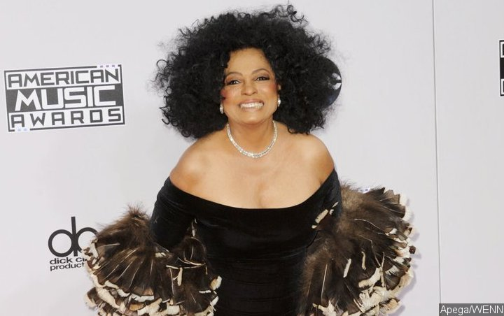 diana ross kicks fan poking her in stomach out of surprise concert rh theprojectsworld com