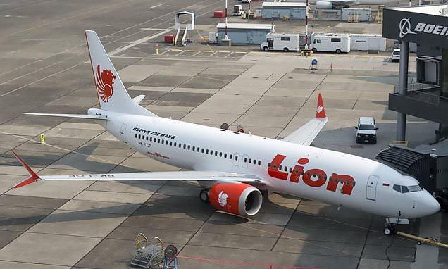 Lion Air jet pilots 'scoured instruction book as doomed jet nosedived'