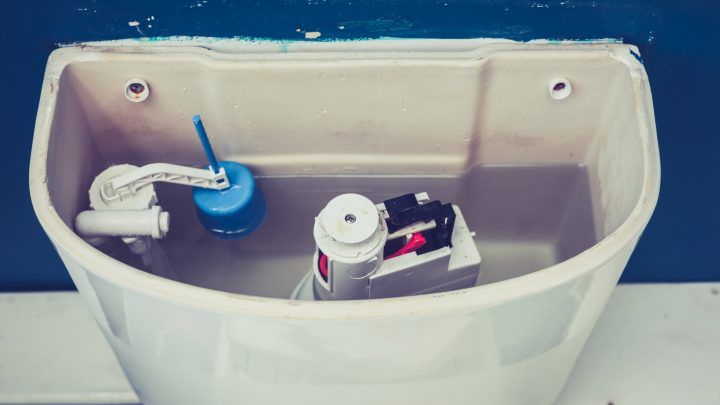 Putting an open tube of toothpaste in your loo cistern will leave it smelling minty fresh for THREE MONTHS, cleaning guru reveals