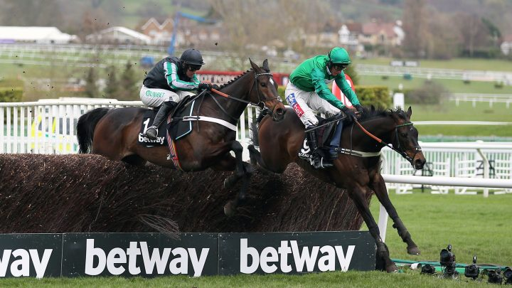 Sceau Royal to have big end of season targets after impressive Festival where he pushed Champion Chase hero Altior close