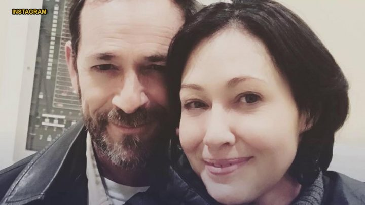 Shannen Doherty mourns Luke Perry, 'Beverly Hills, 90210' co-star: 'I'm struggling with this loss'
