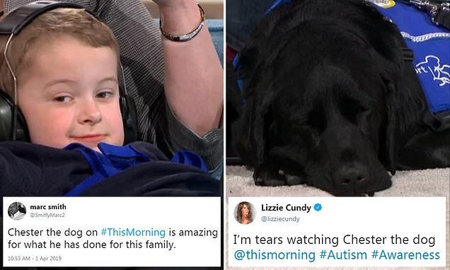 Autistic boy, seven, is inseparable with his support dog Chester
