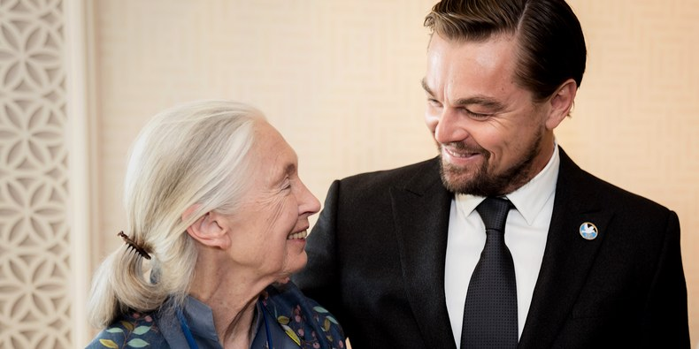 Leonardo DiCaprio Can't Stop Stanning Jane Goodall