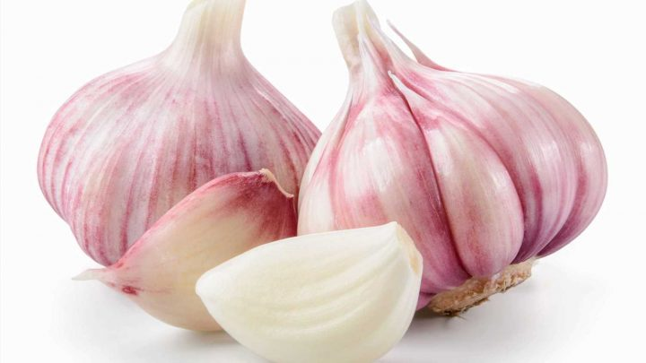 Women are putting GARLIC in their vaginas to treat thrush – but doc warns it could be deadly