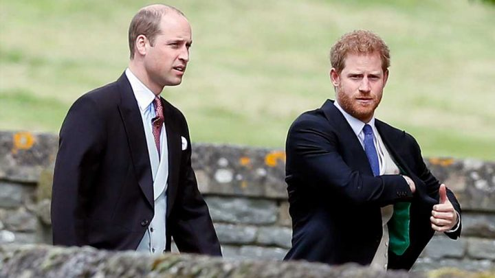 Royal expert says William and Harry went through a 'challenging time' over Meghan