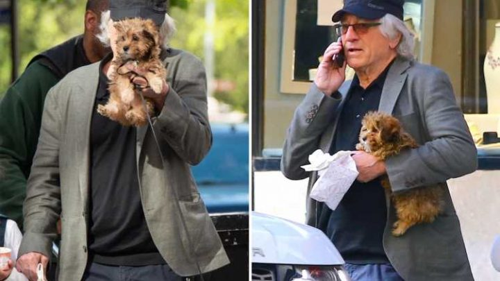 Robert De Niro, 75, shows off his adorable puppy while out on a stroll in New York