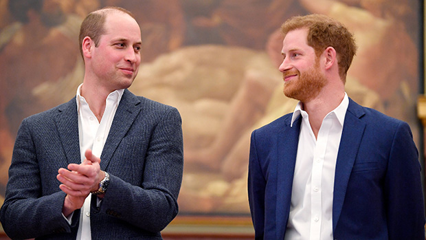 Princes William & Harry Get Along 'Just Fine,' As Do Their Wives, Despite Royal Feud Rumors