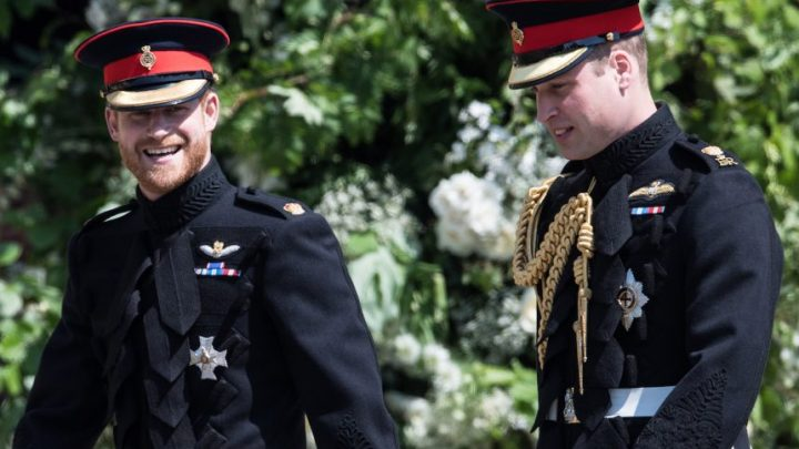 Prince William & Prince Harry Continue To Drift Apart As They Grow Older — 'It's A Sham