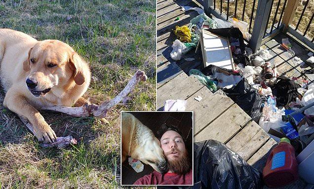 Man claims black bear is bribing his dog with deer bones