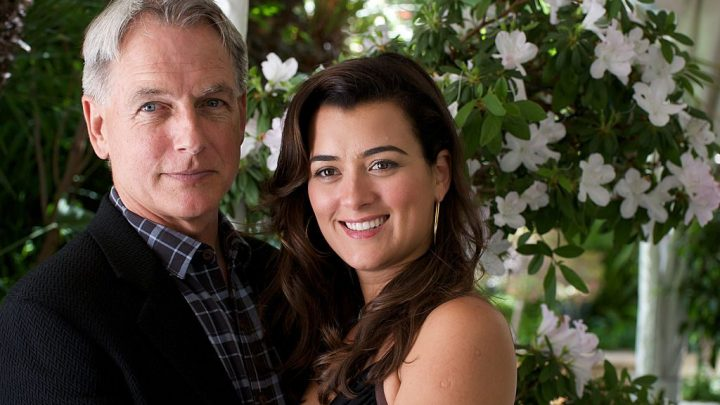 'NCIS:' Cote de Pablo and Mark Harmon to Co-Lead Season 17?