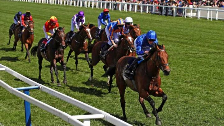 Best horse racing tips for today's action at Newton Abbot, Beverley, Hamilton, Warwick and Cartmel from Tom Bull