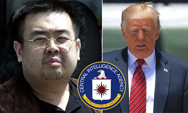 Trump: 'I wouldn't let' CIA use Kim Jong Un's half-brother as a spy